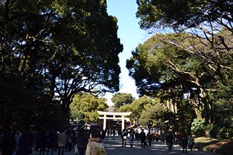 明治神宮参拝と新春の寿ぎの集い写真5