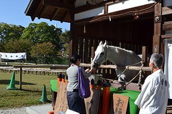 京都シークレットバスツアーとお食事写真1